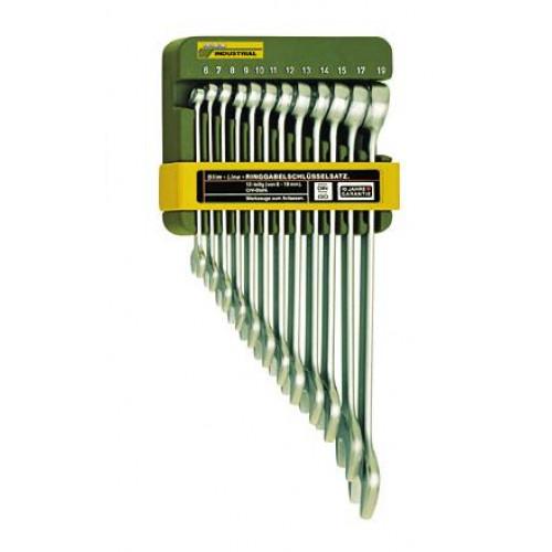 Kombinuotų raktų komplektas 6-19 mm (12 raktų)
